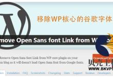 WordPress后台禁用Google Fonts 解决后台管理变慢的方法汇总-贝壳主机网