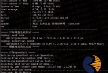 Aoyohost 2核 2GB内存 50Mbps带宽 荷兰CN2 GIA KVM VPS测评-贝壳主机网