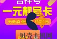 京东通信:吉祥卡,1元月租,电信网络,有大量靓号-贝壳主机网
