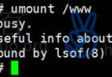 解决umount移除挂载出现device is busy问题-贝壳主机网