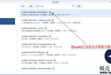 群晖nas使用教程24:docker安装百度云盘工具-贝壳主机网