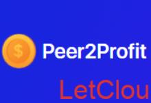 Peer2Profit挂机[不间断]赚钱项目及教程-贝壳主机网